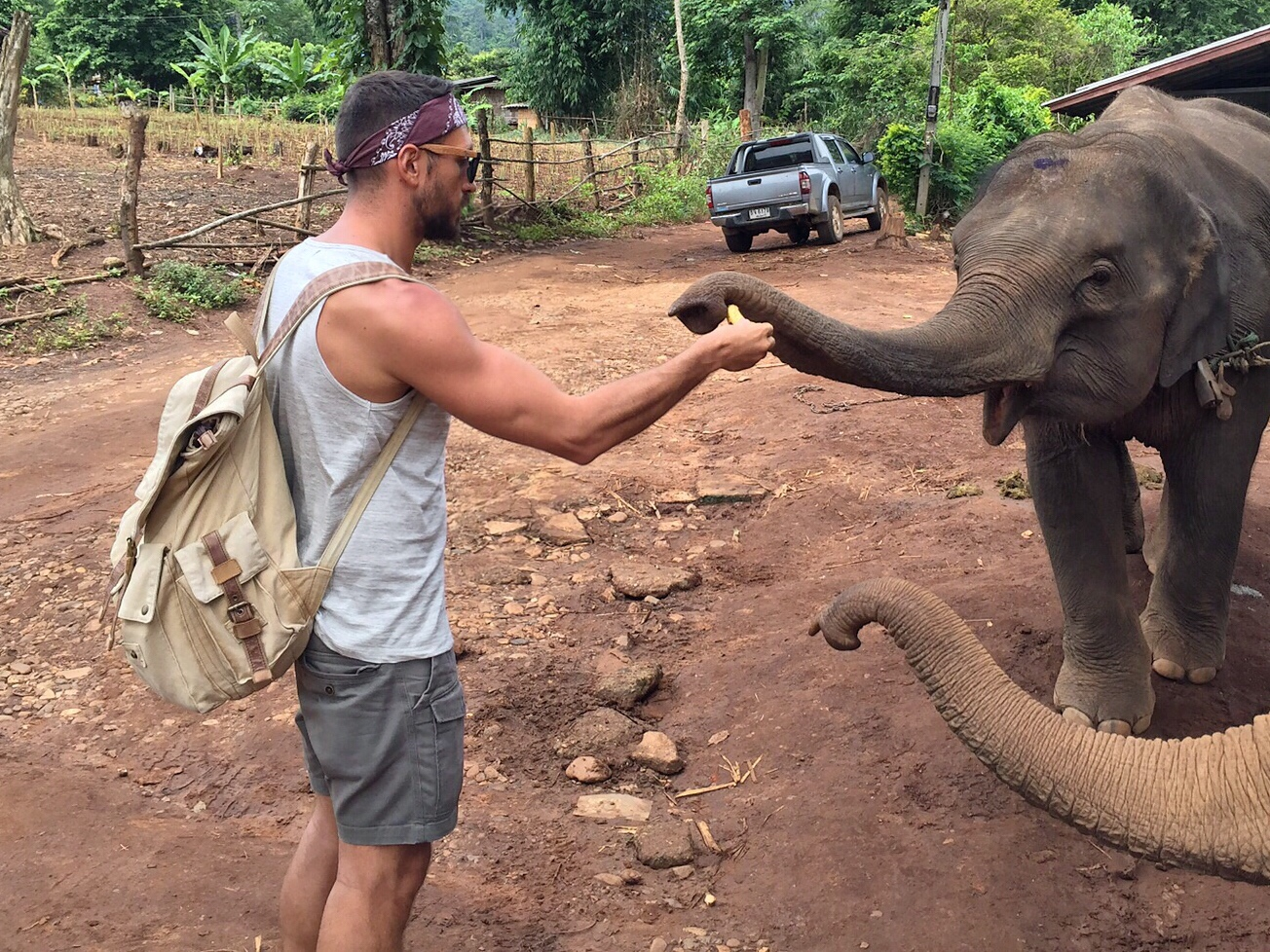 first contact with the elephants
