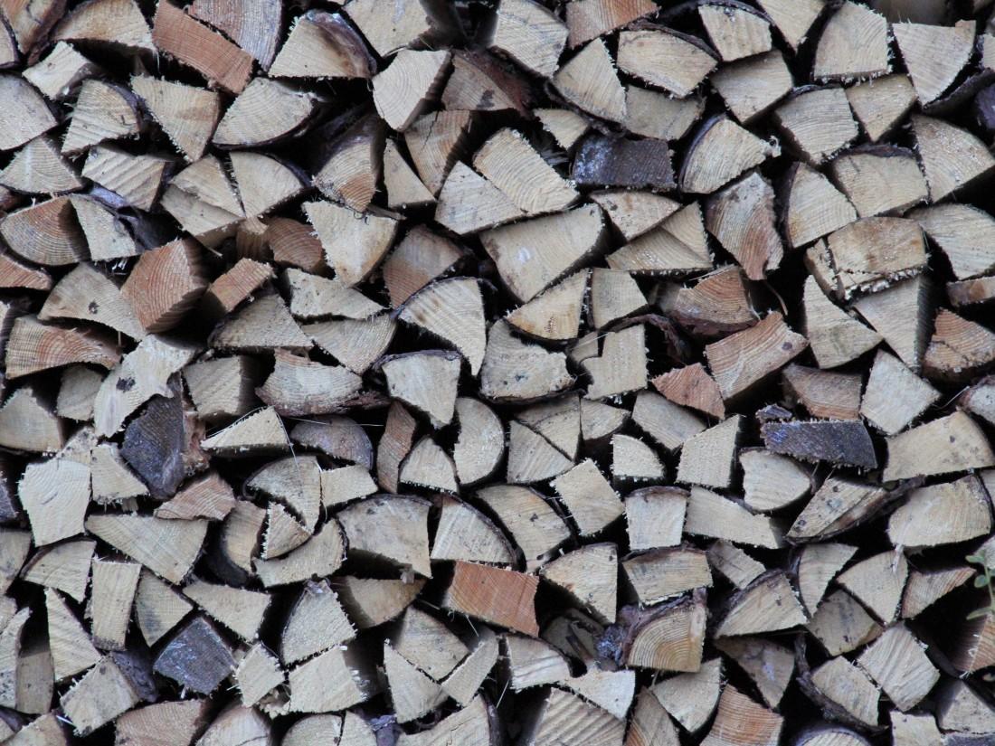 the lumberjack garden