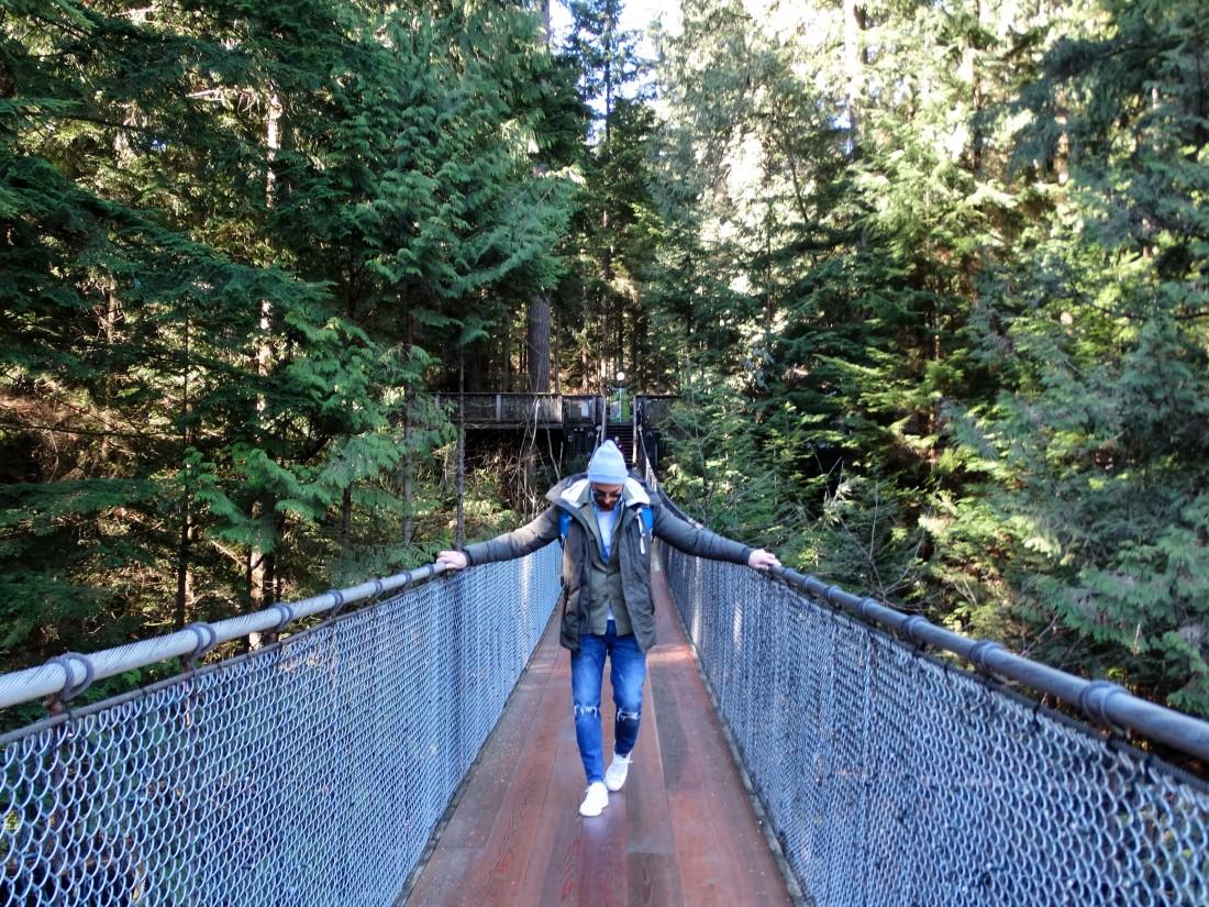 walking on the capilano suspension bridge