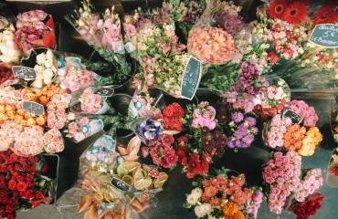 flowers bordeaux