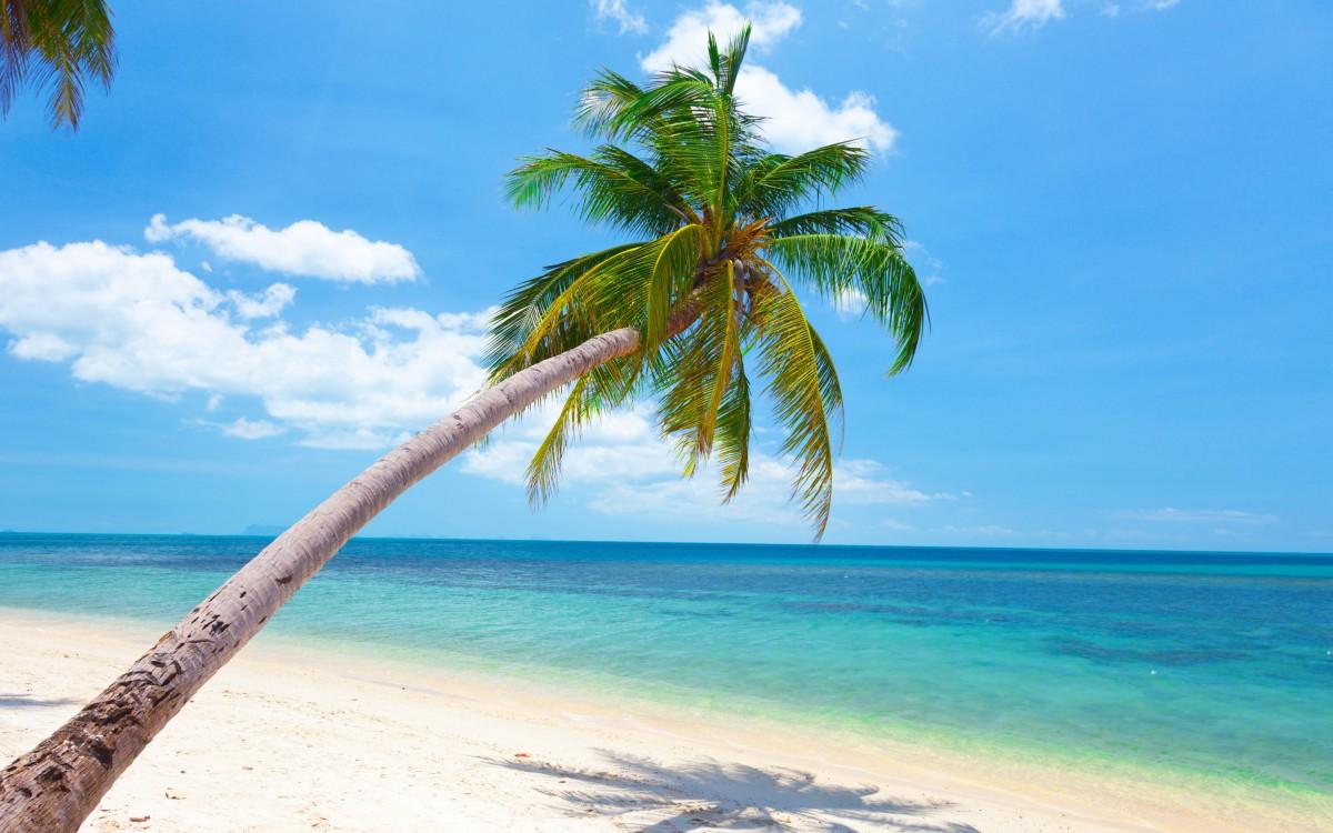 costa deliziosa caraibi