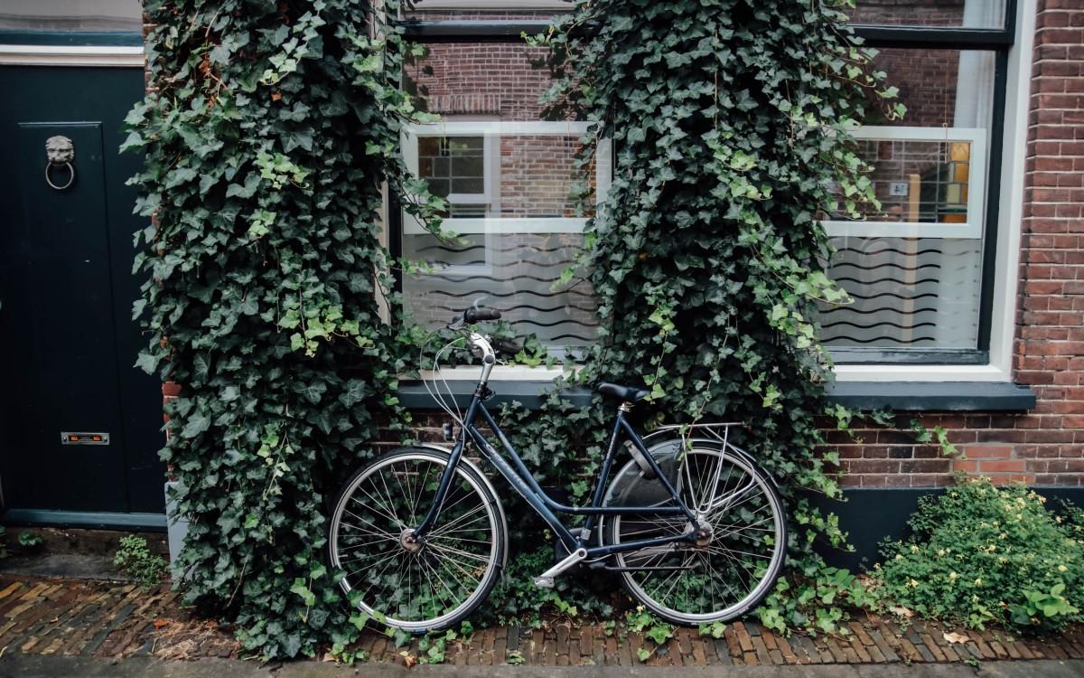 holland bike