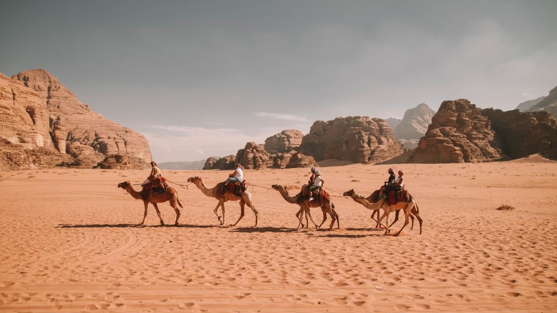tour in dromedario wadi rum